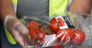 In den Märkten werden die Lebensmittel bereits sortiert. Dabei kommen zum Beispiel nicht alle Tomaten in den Müll, sondern die Packung wird geöffnet und die guten Tomaten kommen mit zur Tafel.