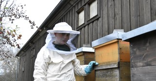 Mittlerweile besitzt der Schüler mehrere Bienenstöcke.