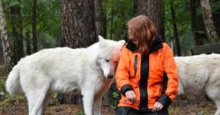 So zutraulich sind die Wölfe nur zu Marion Ebel.
