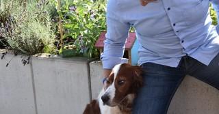 Familienhund Olaf