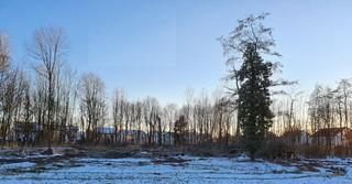 Das ist der geplante Standort der KiTa am Wäldchen, gegenüber der Sakteranlage.
