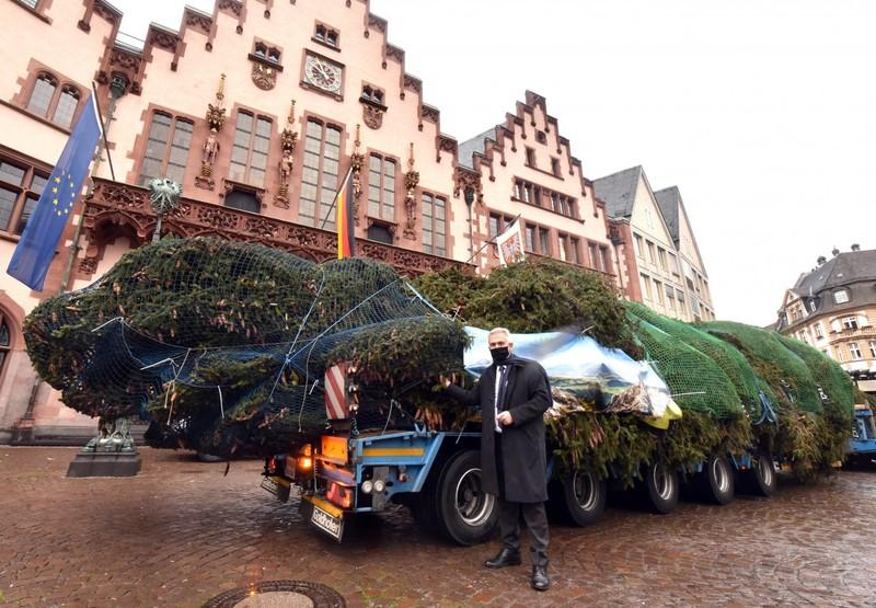 Oberbürgermeister Peter Feldmann und der Weihnachtsbaum